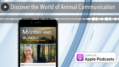 Discover the World of Animal Communication