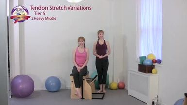 Tendon Stretch Variations